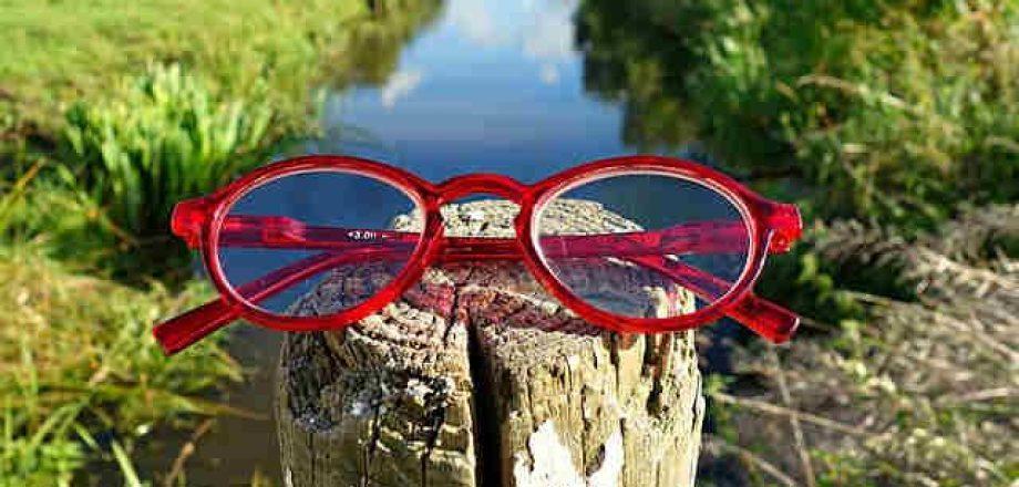 メガネ 汚れ お手入れ